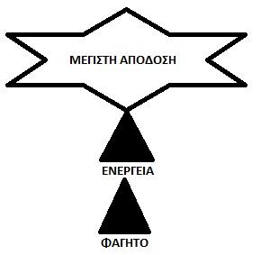 etoima_geymata_mre_30